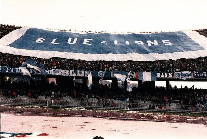 Blue_Lions